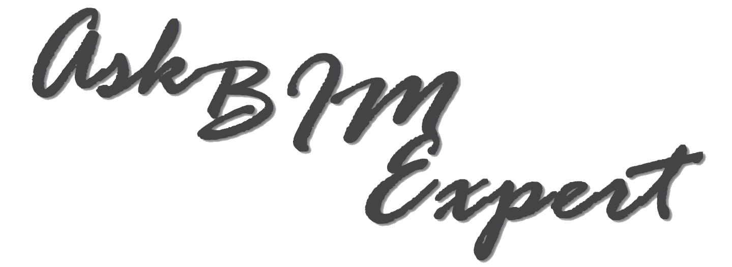 Ask BIM Expert